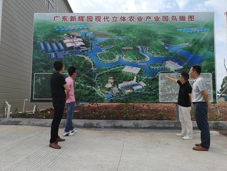 广东怀集:呈现质量兴牧的绿色产业发展态势-伽5自媒体新闻网