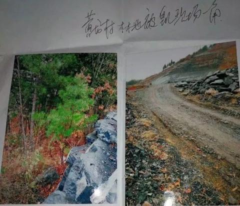村民诉称私人林权遭侵占,执法单位难辞其咎-伽5自媒体新闻网