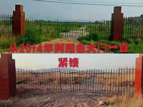 基本农田被指变成工厂占地,部分撂荒或栽树-伽5自媒体新闻网